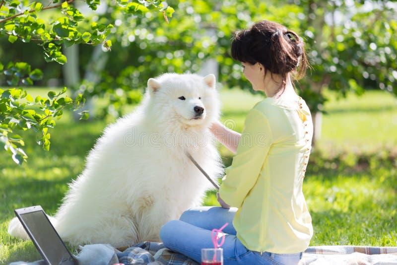 En flicka matar hennes hund i en parkera på en picknick arkivbilder