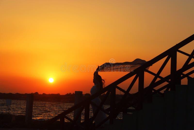 En flicka med en siden- halsduk vid sjösidan på skymning royaltyfri fotografi