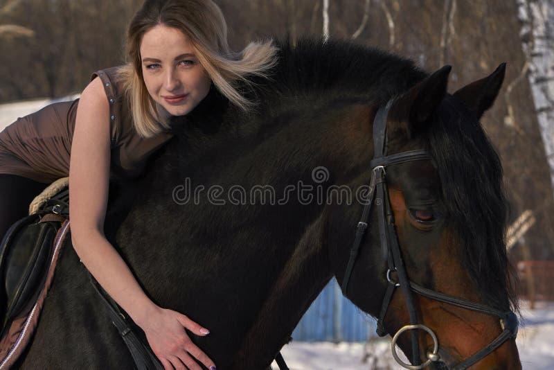 En flicka med långt blont hår meddelar med hennes favorit- häst Flickan älskar djur solig dagfjäder Närbild fotografering för bildbyråer