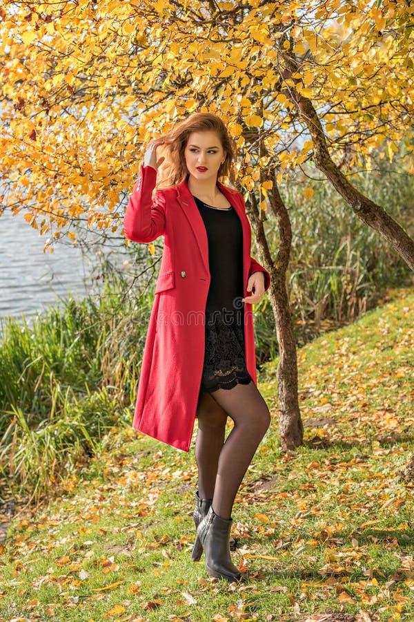 En flicka nära en flod och ett träd med gulingsidor i ett rött lag och en svart klänning justerar hennes hår royaltyfri bild