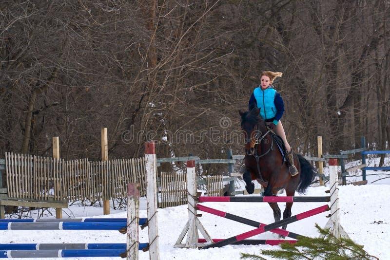 En flicka på en häst hoppar över barriären Utbildningsflickajockey som rider en häst En molnig vinterdag royaltyfri bild