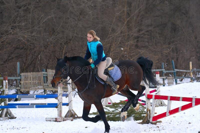 En flicka på en häst hoppar galopper En flicka utbildar att rida en häst i en liten paddock En molnig vinterdag arkivbilder