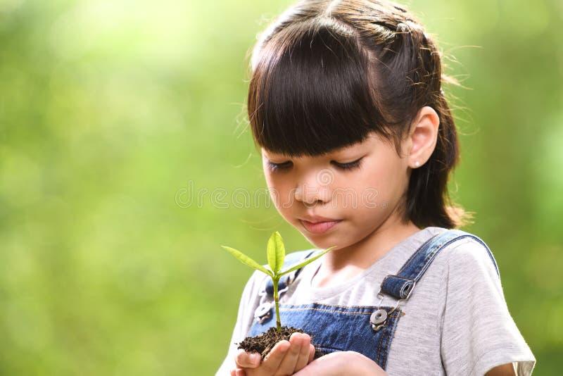 En flicka som rymmer en ung växt i hennes händer med ett hopp av den bra miljön, selektiv fokus på växten arkivbild
