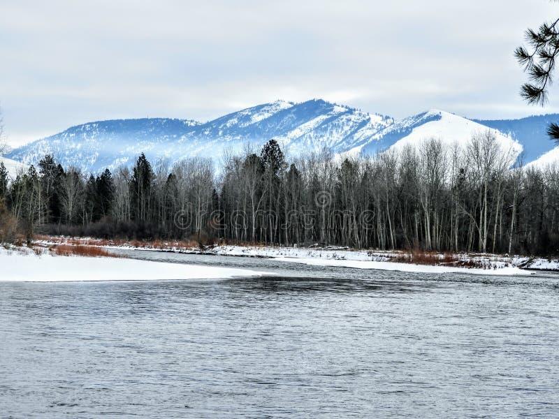 En flod kör till och med den royaltyfria bilder