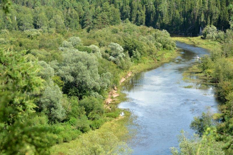 En flod nära skog med fartyget royaltyfri foto
