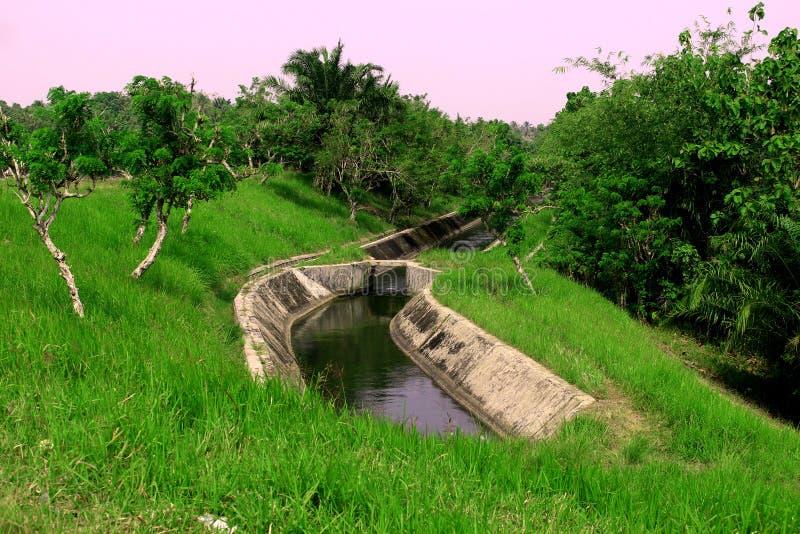 En flod till irigationen i pandeglang banten indonesia med grön sikt fotografering för bildbyråer