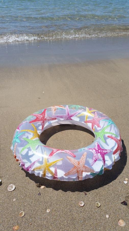En flytande Ring With Starfishes Prints Laid på stranden med havsvågor och snäckskal på en Sunny Summer Day, Israel royaltyfria foton
