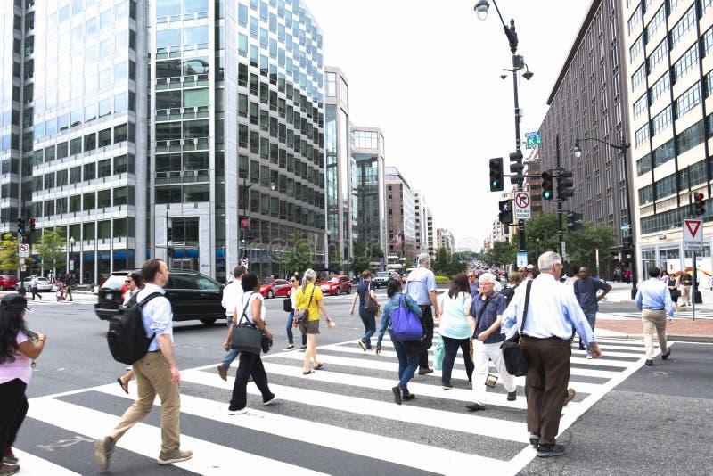 En folkmassa av folk som korsar en stadsgata på övergångsstället royaltyfria bilder