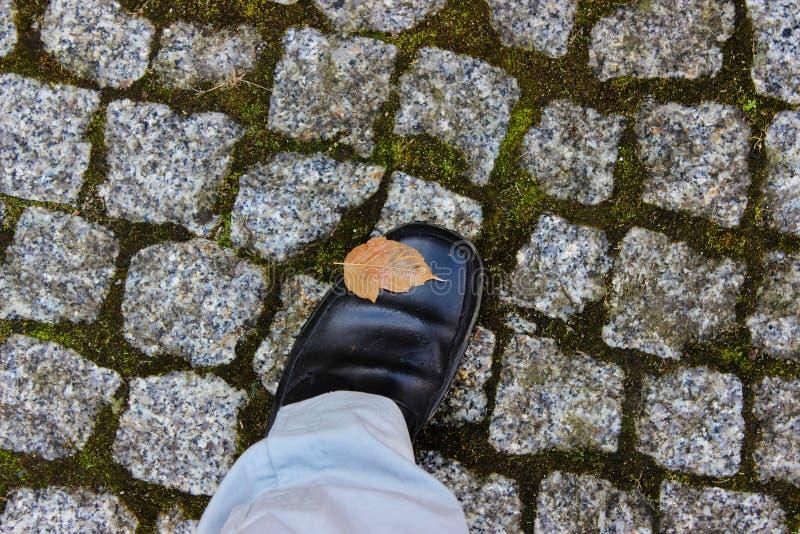 En fot i formella skor på historiska kullersten royaltyfria bilder