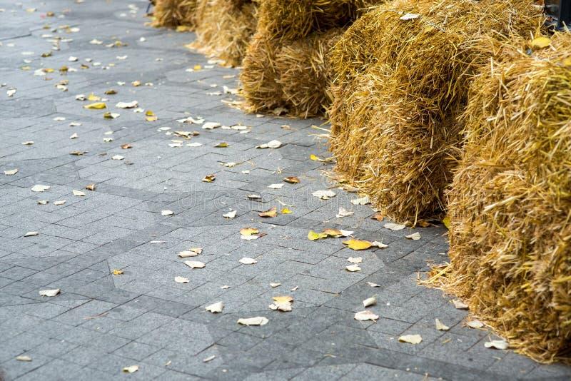 En fot- trottoar av tegelplattan stenlade arkivfoton