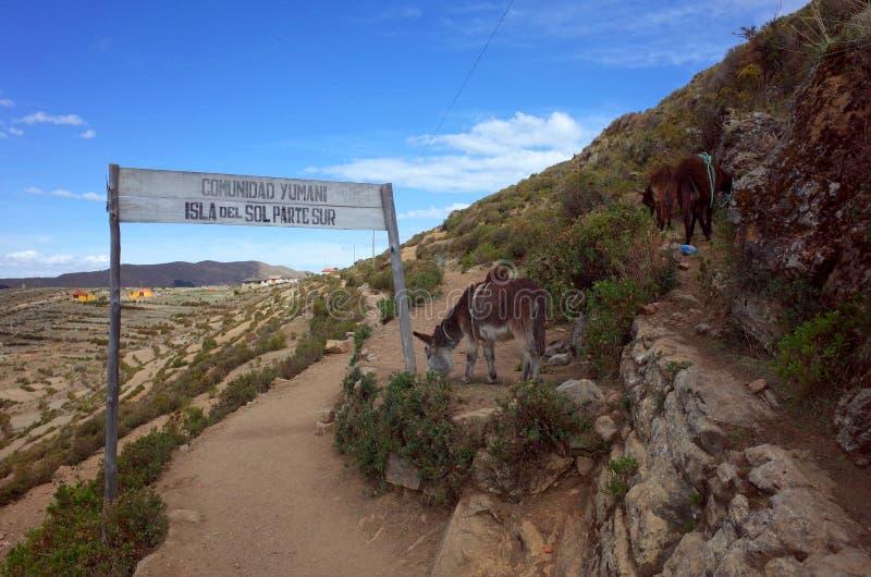 En fotvandra slinga till och med Isla Del Sol på sjön Titicaca royaltyfri foto