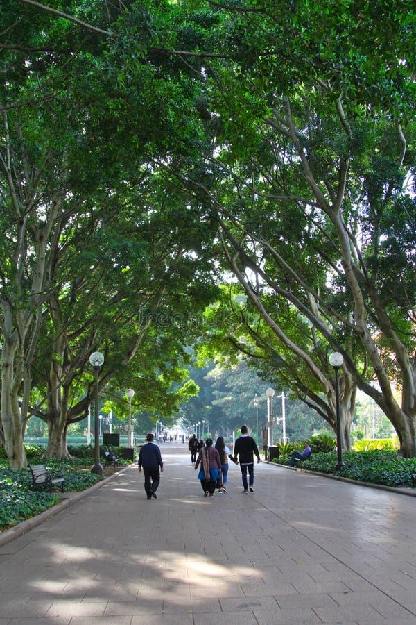 En fridsam sikt av Hyde Park Sydney arkivfoton