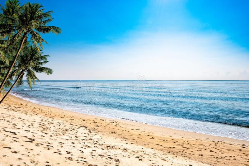 En fridsam strandplats i Thailand, exotiska tropiska strandlandskap och det blåa havet under en blå bakgrund Avslappnande somma royaltyfri bild
