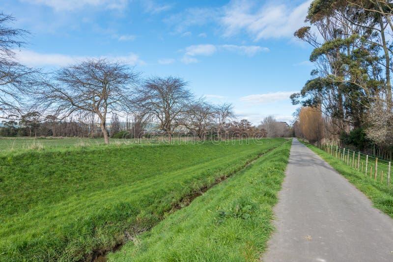 En gångbana till och med en parkera i Palmerston norr Nya Zeeland royaltyfria bilder