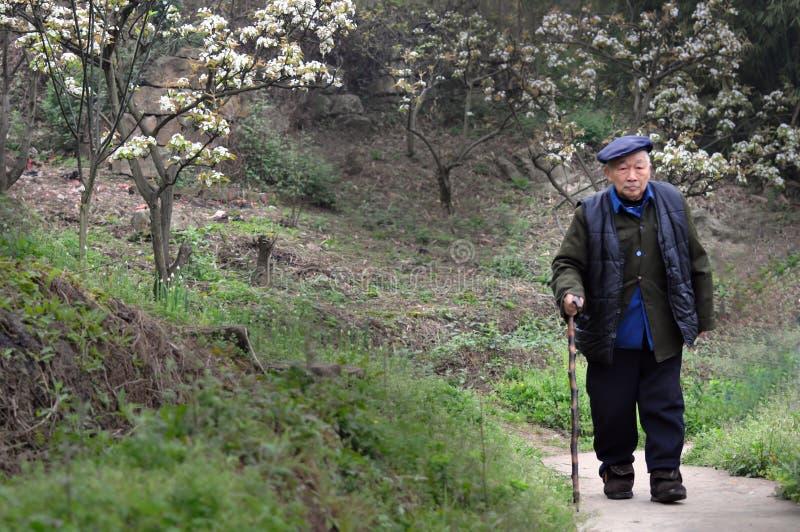 En gamal man med att gå pinnen royaltyfri foto