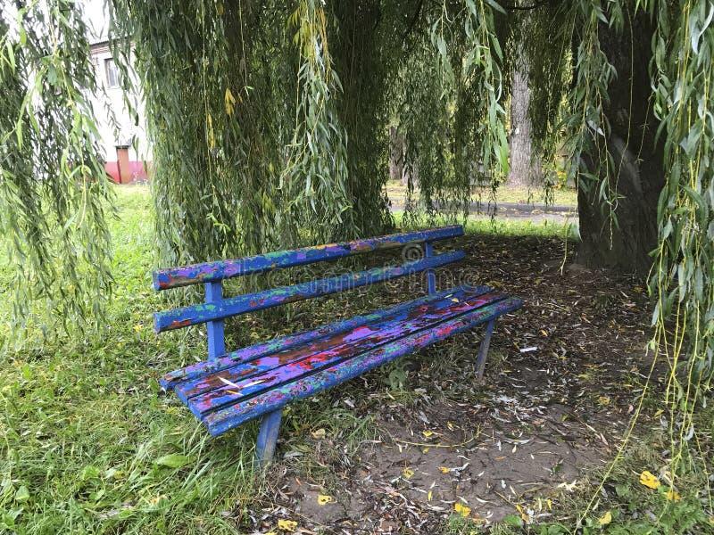 En gammal träbänk under en pipande pil Skalningen av olika färger visas royaltyfri bild