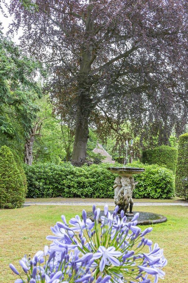 En gammal vattenspringbrunn med agapanthusblommor i förgrunden, i ett härligt parkerar eller den Bouvigne slotten på Breda, Neder royaltyfri fotografi