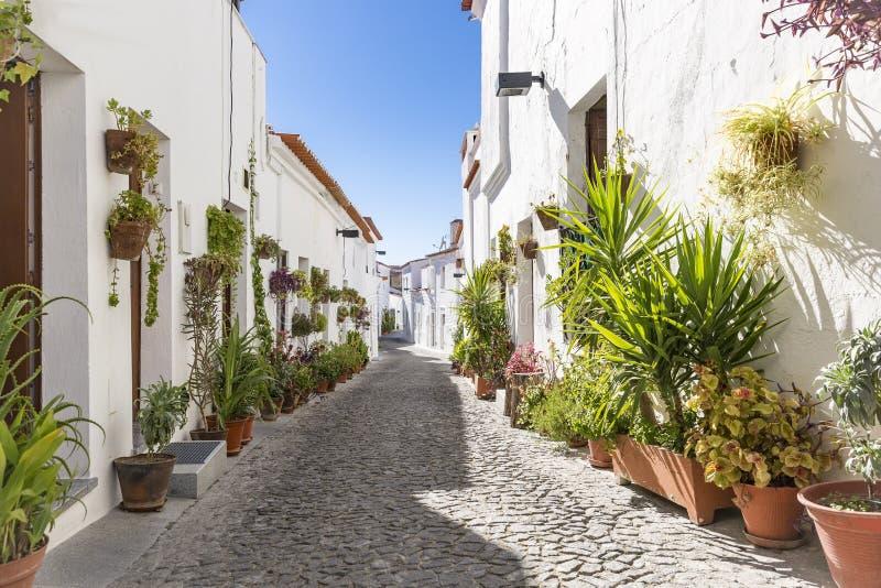 En gata i den Moura staden med typiska vita hus, område av Beja, Portugal royaltyfri fotografi
