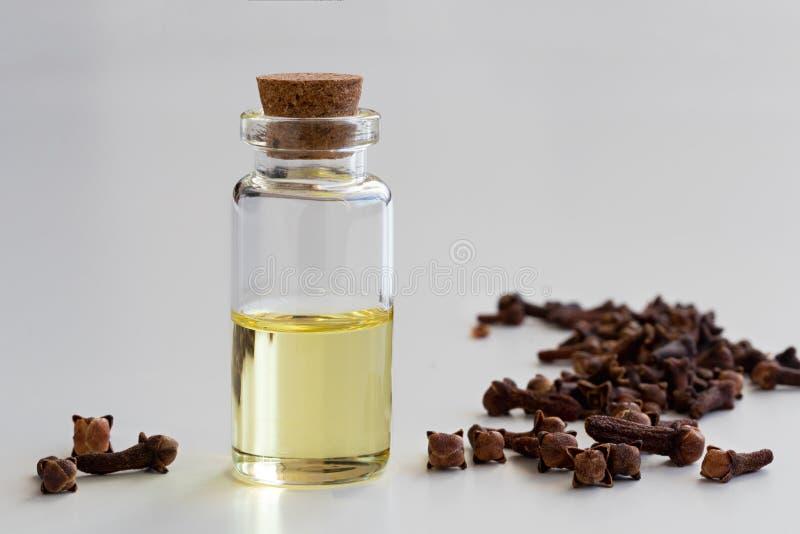 En genomskinlig flaska av nödvändig olja för kryddnejlika med kryddnejlikor på vit royaltyfria foton