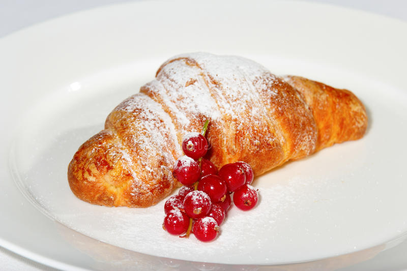Giffel med cranberries och socker fotografering för bildbyråer