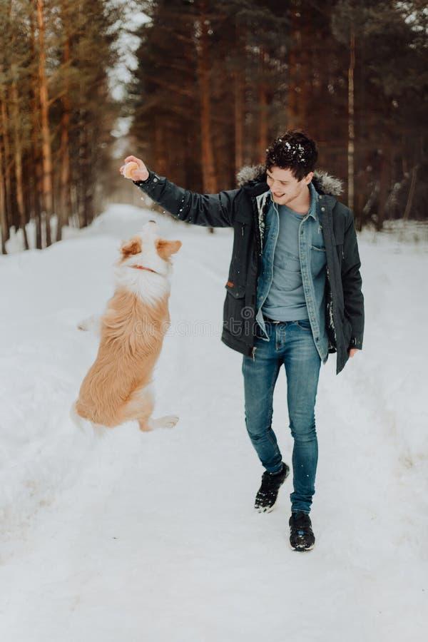 En gladlynt grabb i ett grov bomullstvillomslag i ett varmt omslag går en röd hund border collie i vintersnöskogen begreppet arkivfoto