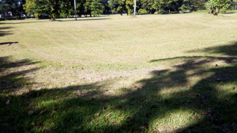 En golfbana eller ett fältsommarlandskap royaltyfria foton