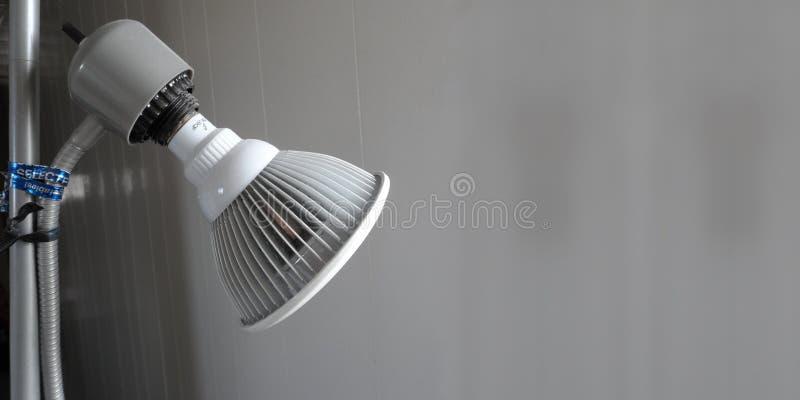 En grå lampa står vid ett hall royaltyfri foto