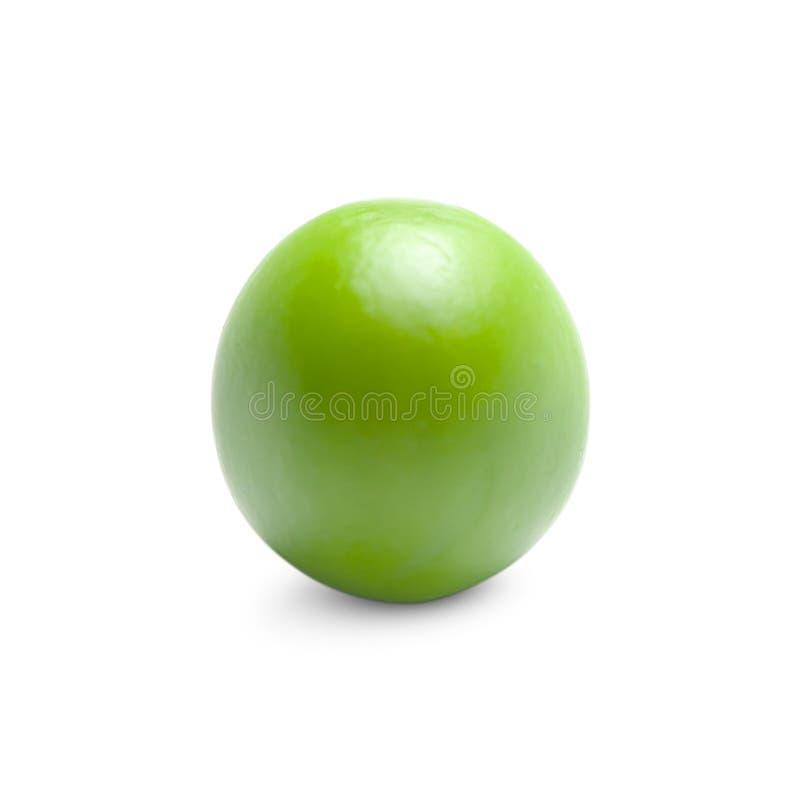 En grön ärta på vit bakgrund royaltyfri fotografi