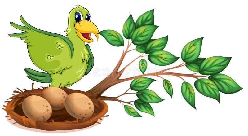 En grön fågel på filialen av ett träd stock illustrationer