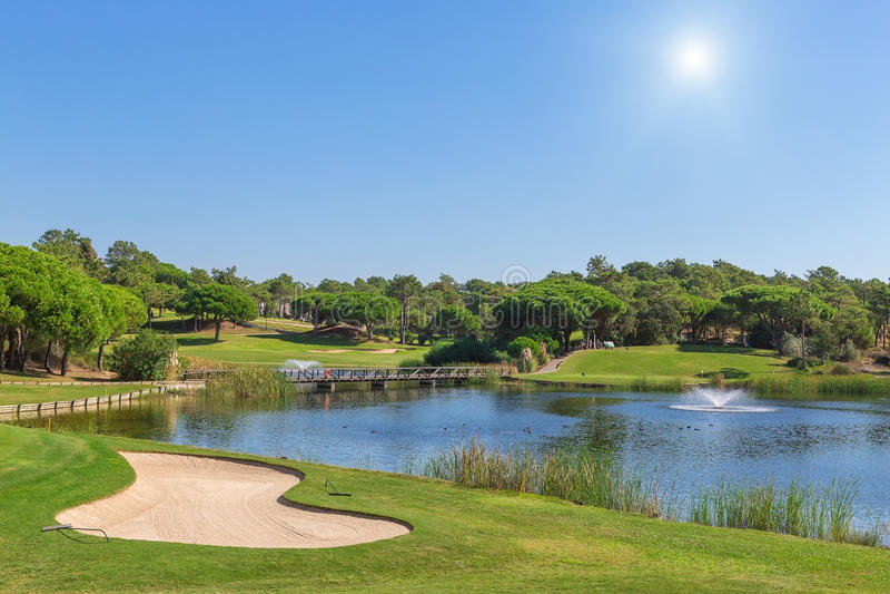 En grön gräsmatta till sjön, golfbana. royaltyfri bild