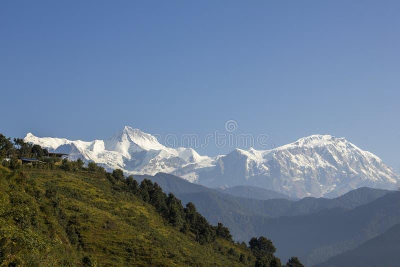 En grön lutning av en kulle med hus på bakgrunden av den snöig bergkanten av Annapurna under en klar blå himmel royaltyfria bilder