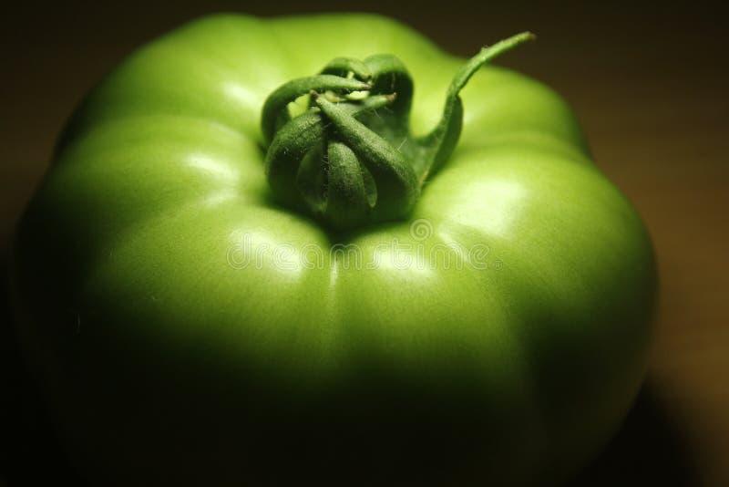 En grön tomat i ljus och skugga arkivbilder