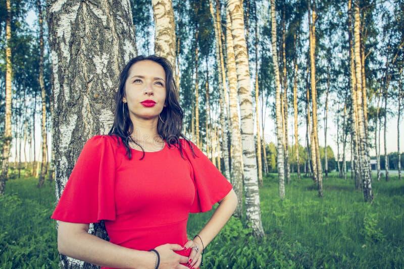 En gravid kvinna med röda kanter i en röd klänning står i drömma för för björkdunge och leende arkivfoto
