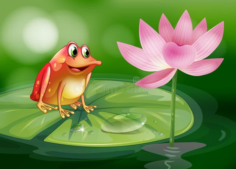 En groda ovanför waterlily bredvid en rosa blomma stock illustrationer