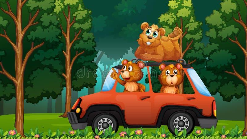 En grupp av björnloppet i skogen med bilen vektor illustrationer