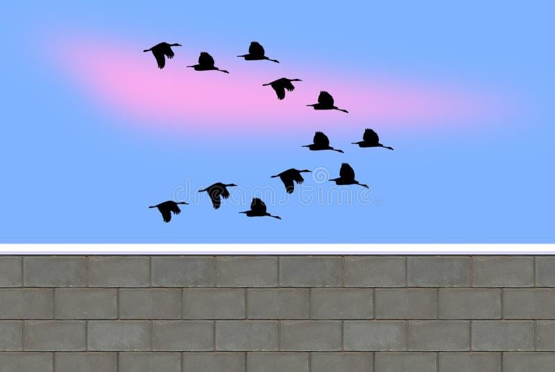 En grupp av flyget duckar i vintern Tid royaltyfri illustrationer