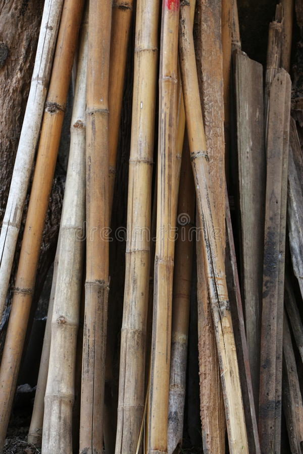 En grupp av gamla bambustjälk royaltyfri bild