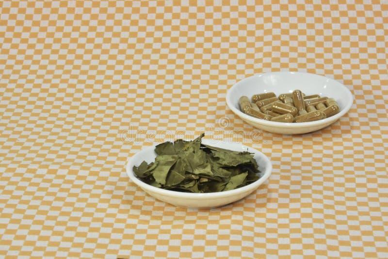 En grupp av grönt te, på bladkapslar eller piller på disk royaltyfri bild
