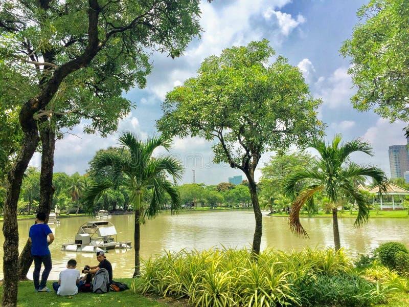 En grupp av lokaler som kopplar av under skuggan av ett träd längs sjön av Lumpini, parkerar på en varm dag i i stadens centrum B royaltyfria foton