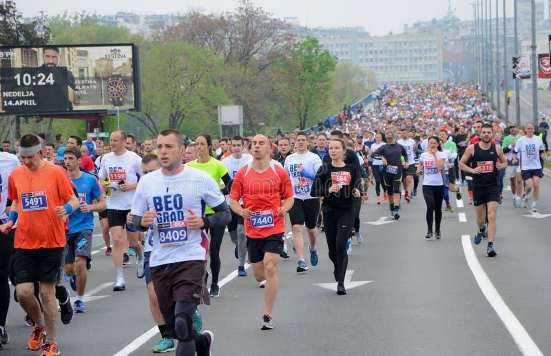 En grupp av maratonkonkurrenter under den 32nd Belgrade maraton på April 14, 2019 i Belgrade, serb arkivbilder