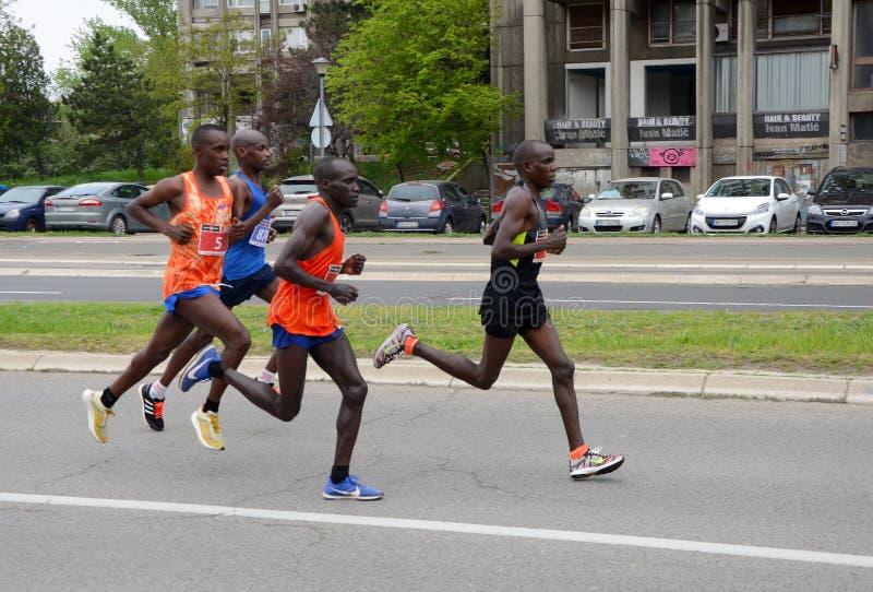 En grupp av maratonkonkurrenter under den 32nd Belgrade maraton på April 14, 2019 i Belgrade, serb royaltyfri bild