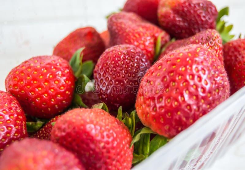 En grupp av röda jordgubbar med sidor i ett plast- magasin arkivbilder