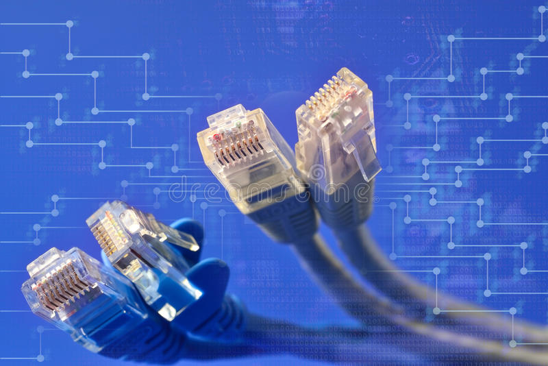En grupp av UTP kablar arkivbild
