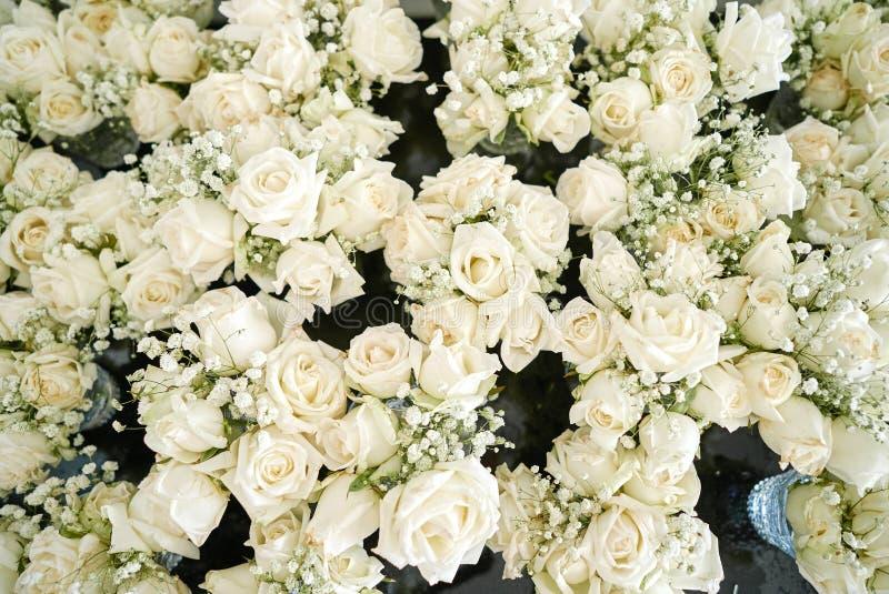 En grupp av vit- och krämrosor, gypsophilaen för andedräkt för behandla som ett barn` s blommar för att gifta sig mötesplatsgarne arkivbild