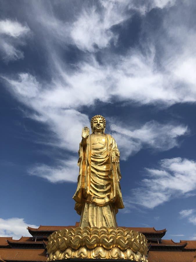 En guld- Buddha som står högväxt på lotusblomman royaltyfria foton