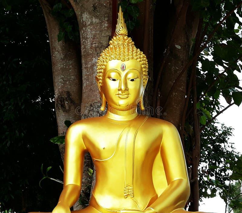 En guld- Buddhastaty i tempel arkivfoton