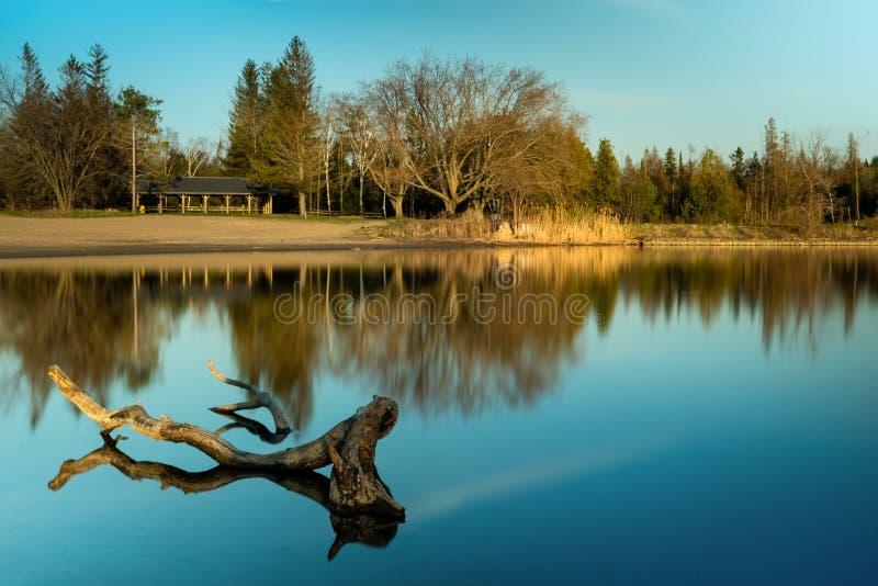 En guld- timmesolnedgång på en liten sjö royaltyfri bild
