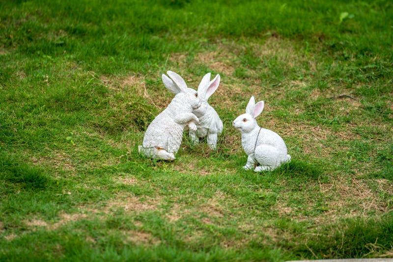En gullig kanin på en gräsplan royaltyfria foton