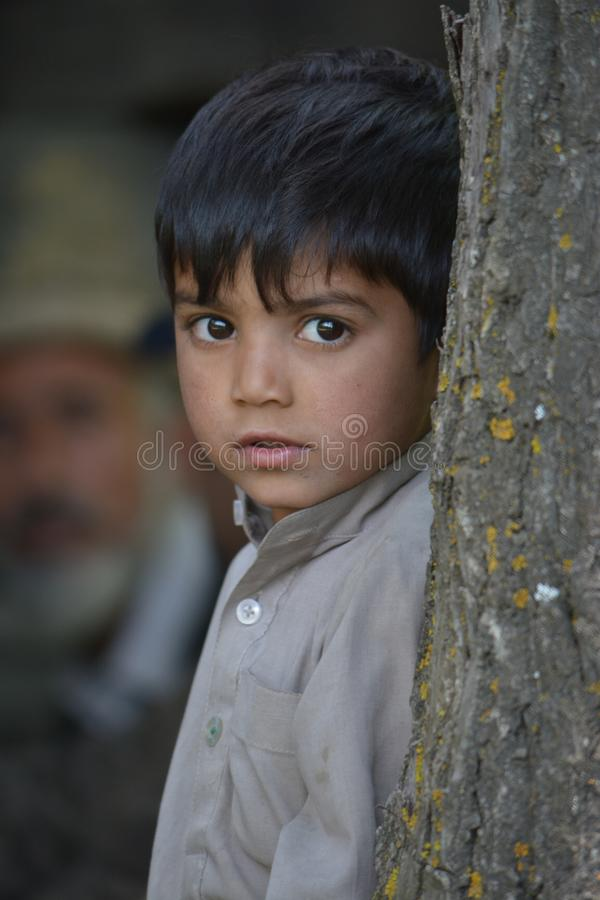 En gullig pojke ser bakifrån ett träd i countrysside royaltyfri bild