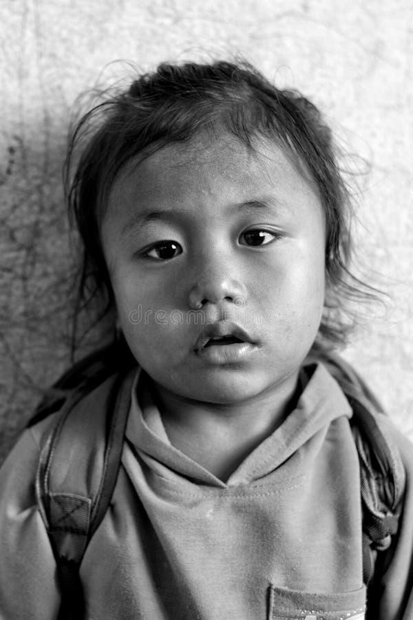 En gullig pys i Katmandu, Nepal royaltyfri bild